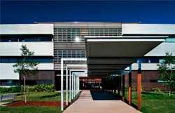 荷兰商学院MBA